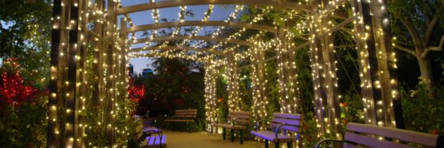 Come illuminare il giardino come fare punto luce - Illuminare il giardino ...