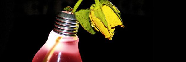 Come svuotare una lampadina, una piccola guida